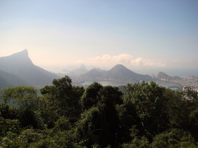 Tijuca_forest_etc_008